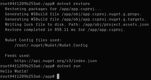 dotnet restore run