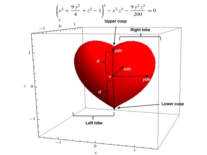 Heart-shaped primitive