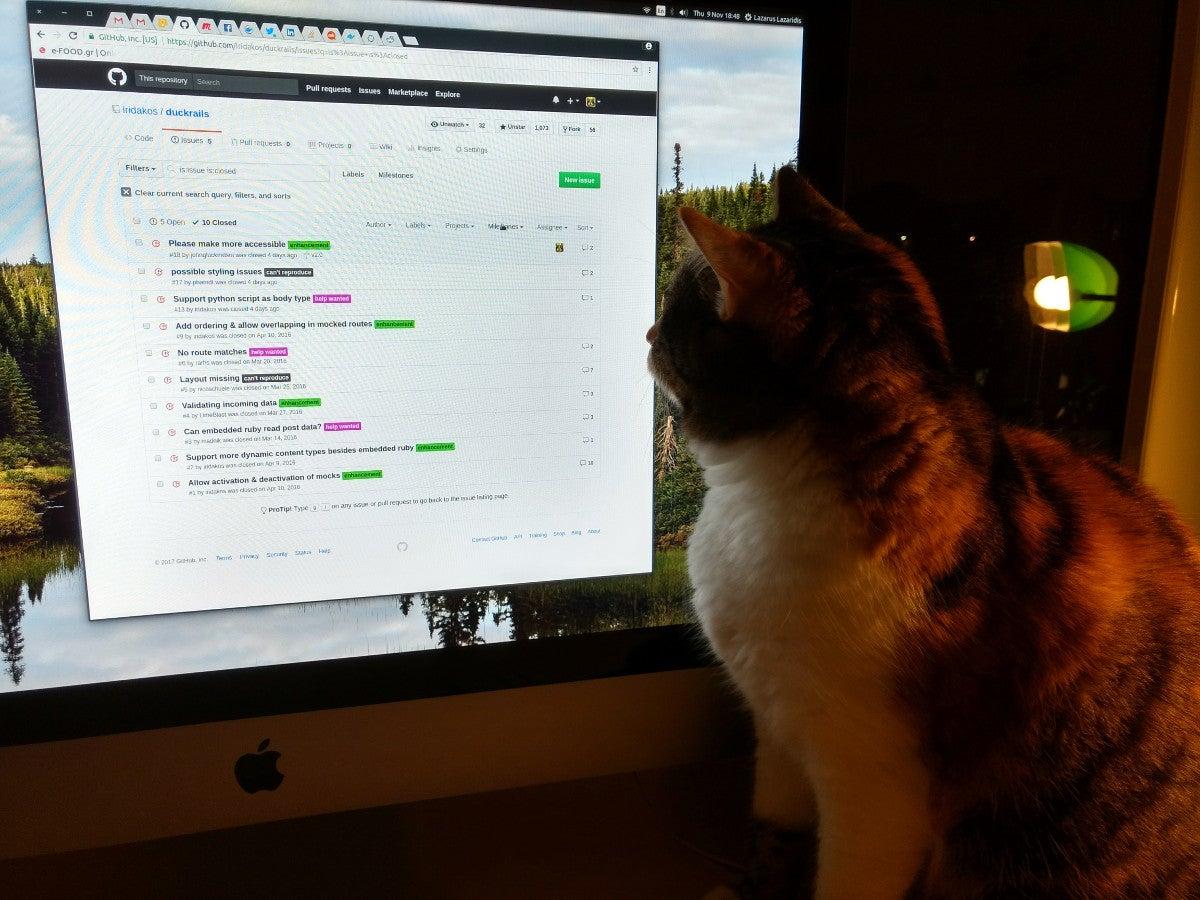 cat debugger