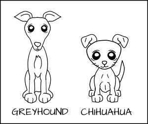 Cartoon of a Greyhound and a Chihuahua
