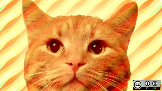 Open source projects and tools for your pet   Opensource com