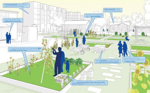 Community garden, sketch and annotated