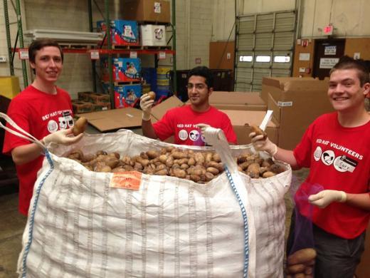 Interns volunteering 2013