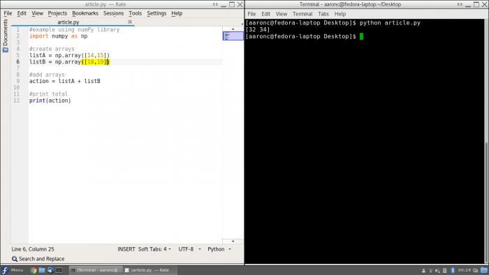 Python script screenshot