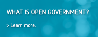 What is open government (promo)