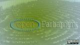 open parliament