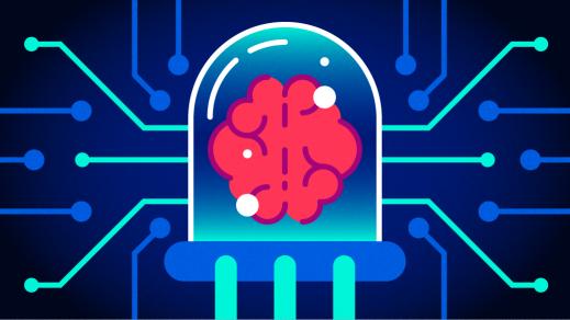 Brain on a computer screen