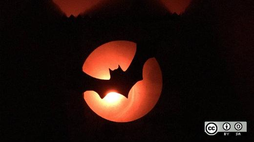 Halloween - backlit bat flying