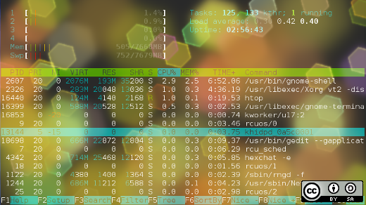 Example of htop output