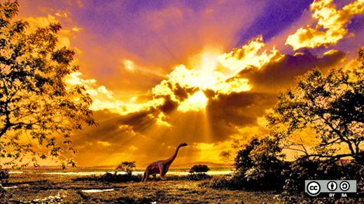Dinosaurs on land at sunset