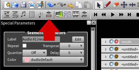 Manage audio files button
