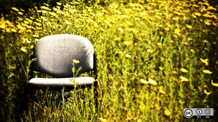 A chair in a field.