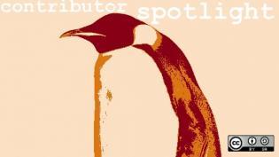 Penguin, stylized, contributor spotlight