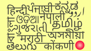Indian words from Wikimedia