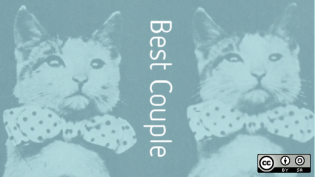 Best couple of cats, Open Source Yearbook