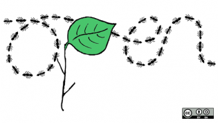 """Ants and a leaf making the word """"open"""""""