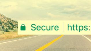 Secure https browser