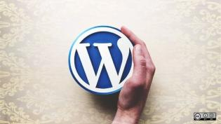WordPress logo with hand - open source content management system