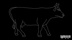 Cow on parade.