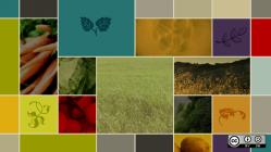 A montage of farm scenes