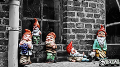 Gnomes in a window.