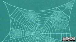 Spider web on green background
