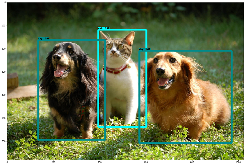 The out-of-the-box Object Detection model