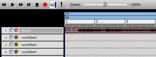 Audio segment
