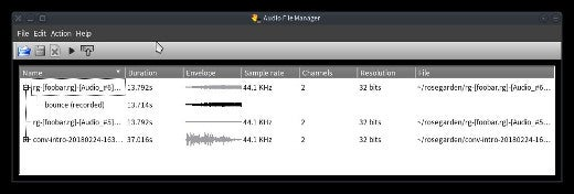 Audio file manager