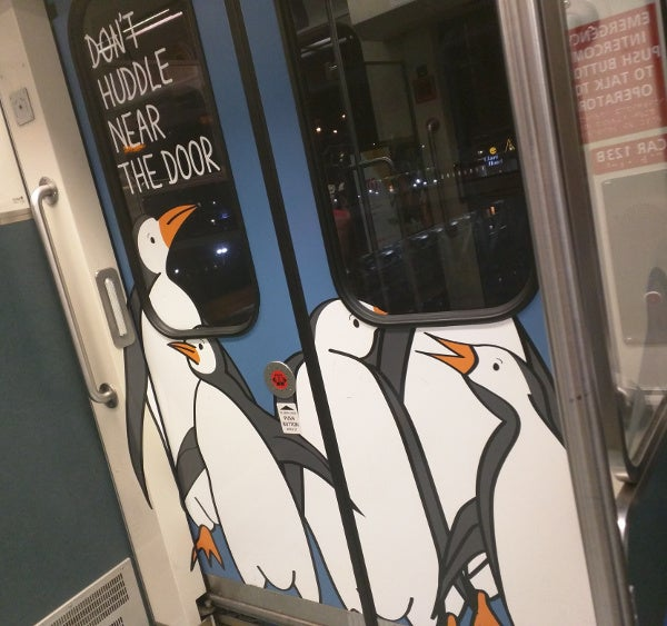 Penguins on the train