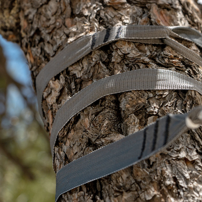 Open source tree straps from Hummingbird Hammocks.