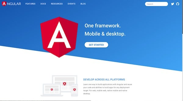 Angular homepage