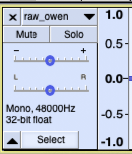 Select whole audio track button