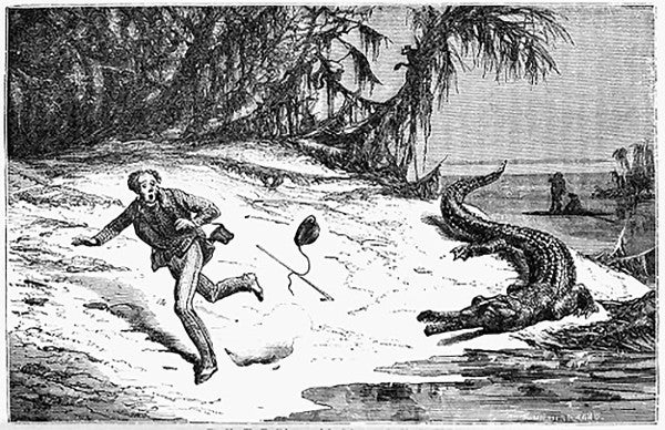 Man being chased by an alligator