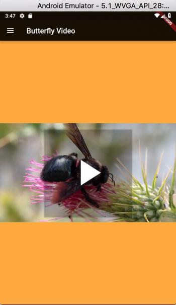 Flutter Video Plugin