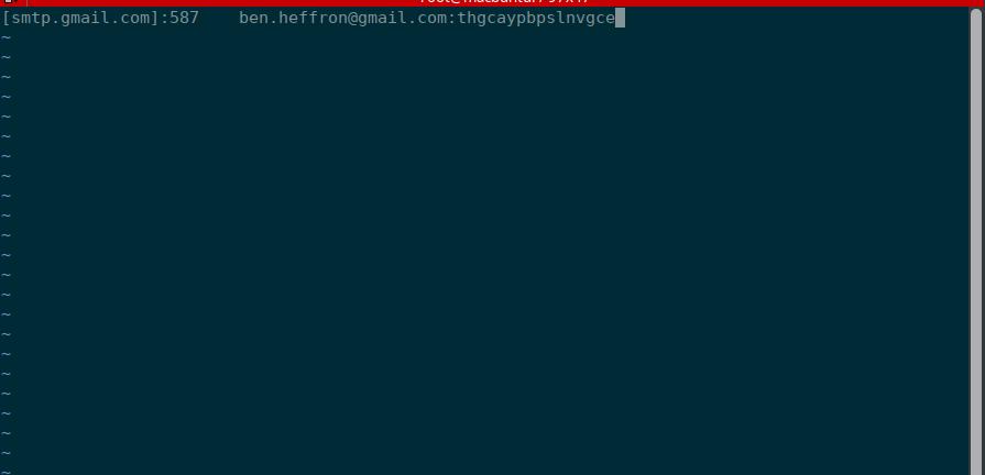 Postfix - Google_setup_3_vim_config.png