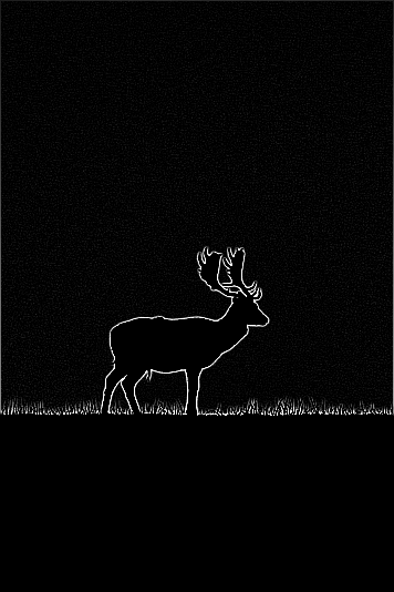 Deer image with edge detection