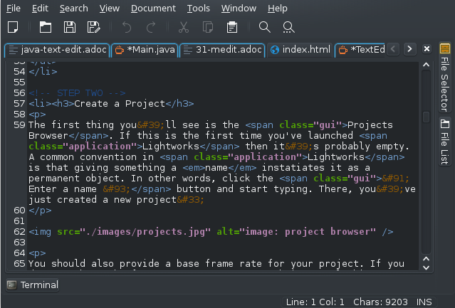 Medit terminal showing examples of Bash script in editor using Tango color scheme against dark background