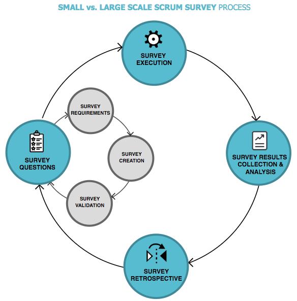 Small scale scrum survey process
