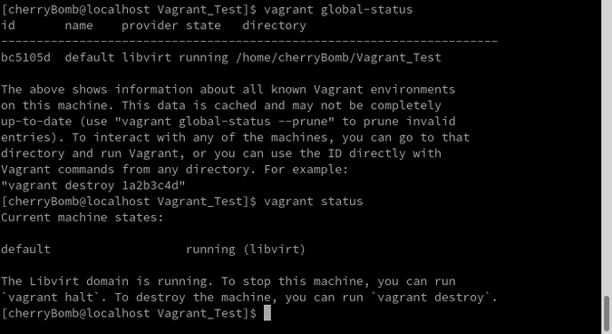 Verifying with the vagrant global-status command